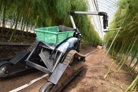 野菜収穫ロボット