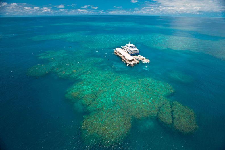 Šnorchlovacia zóna okolo koralového útesu (Promo fotka Sunlover Reef Cruises)
