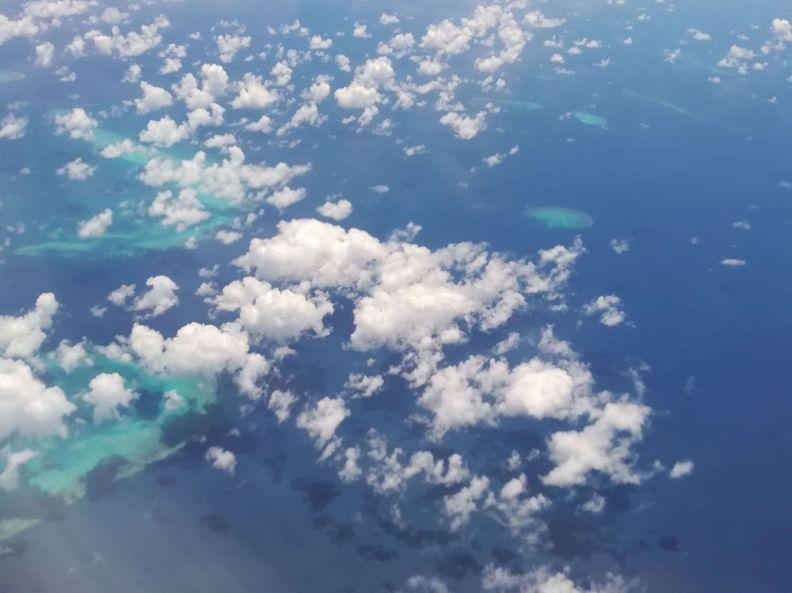 Koralová bariéra zhora