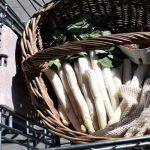 Einkaufen ohne Plastikmüll – geht dies überhaupt noch?