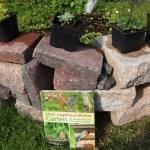 Mein vogelfreundlicher Garten – wir brauchen eine Trockenmauer