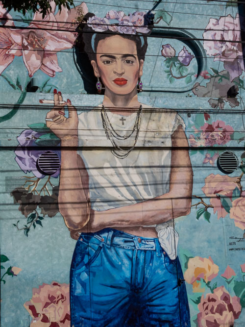 A wall mural of Frida Kahla in Palermo, Buenos Aires, Argentina
