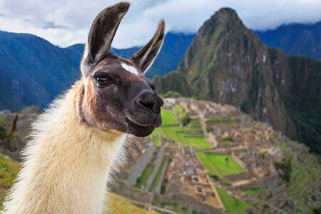 machu picchu tours peru pie experiences