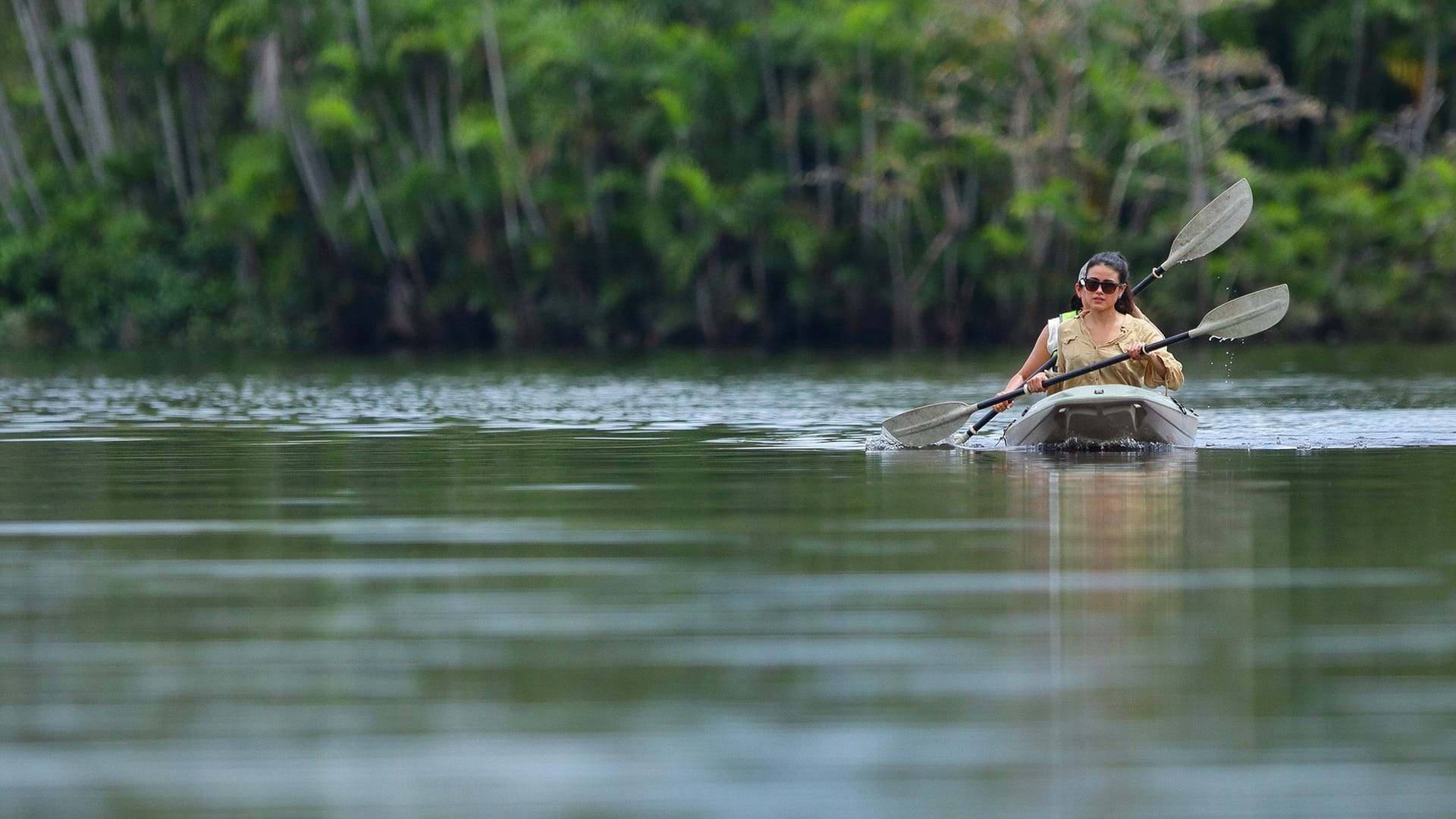 Jungle trip in a cruise on the amazon