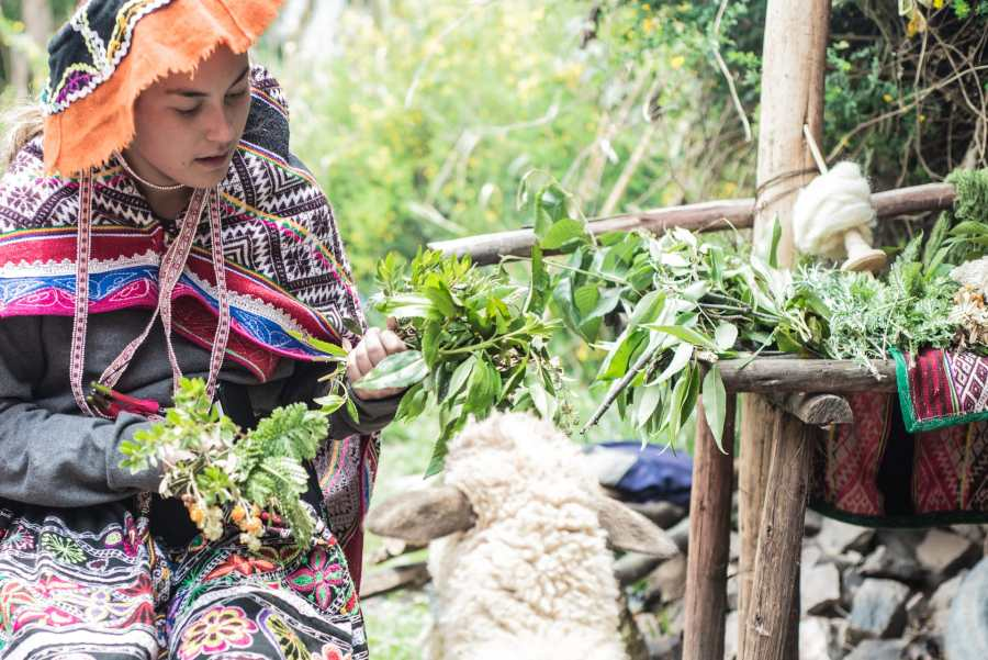 Peruvian textile weaving - Observing local plants on Sacred Valley Tour