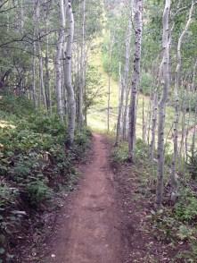 Park City Utah Hike