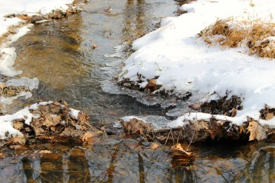 Faster-moving sections of the creek only had ice along the edges.