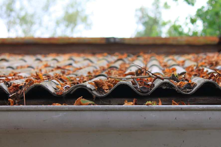 roof and gutter cleaning tips