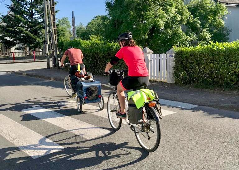 Départ randonnée vélo avec chien