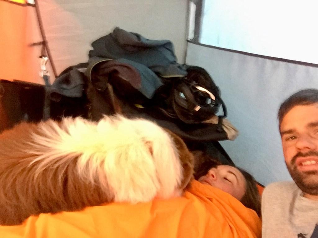 dormir en tente avec un chien