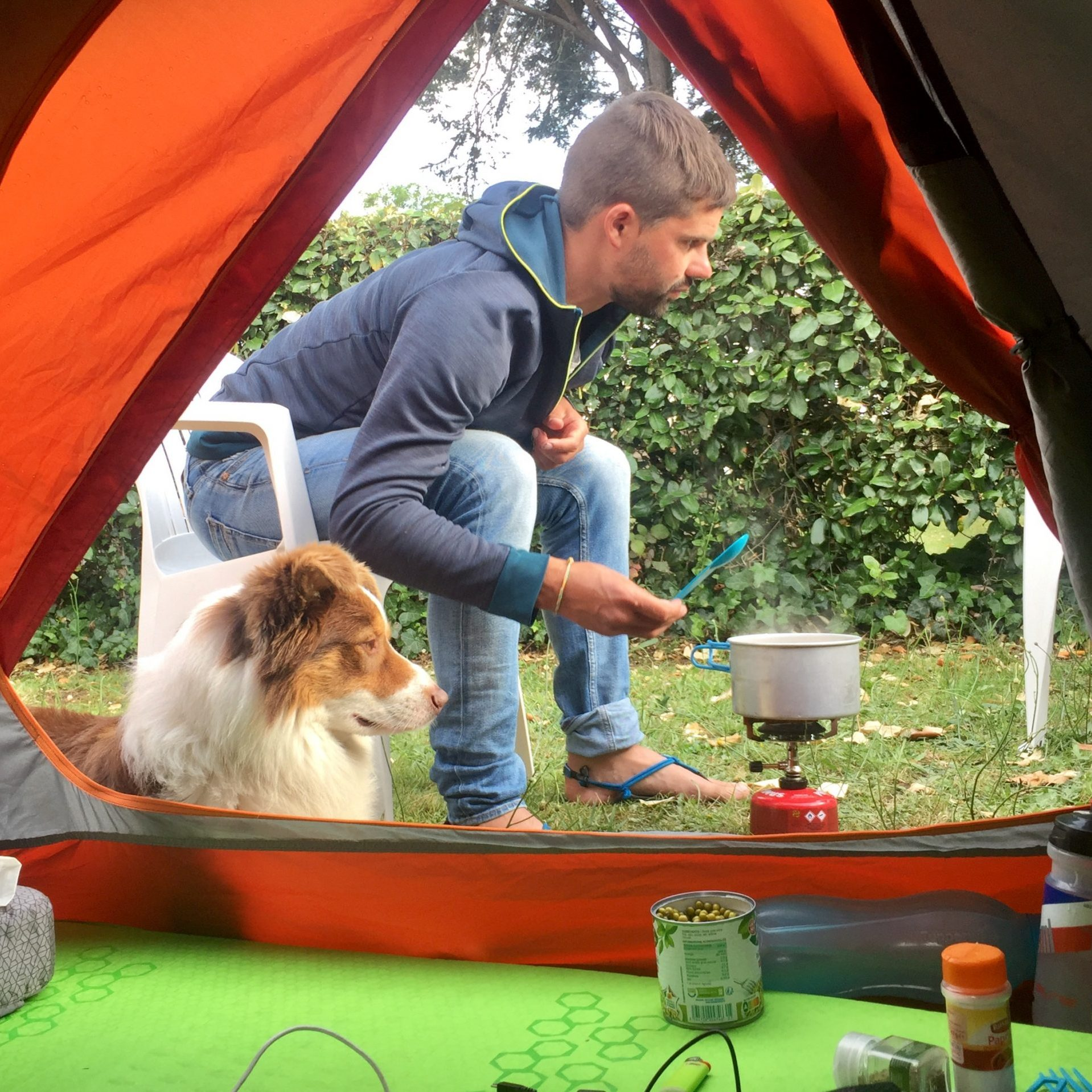 camping avec un chien repas