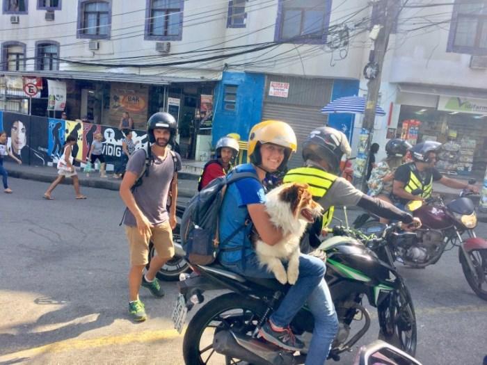 planète 53 : voyager avec un chien marine et n'lou