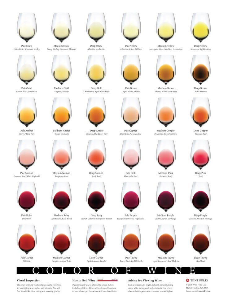 Color-of-Wine-chart-winefolly