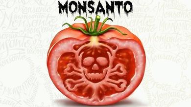 """Martes 7: Senado se prepara para votar """"Ley Monsanto"""" en medio de movilizaciones"""