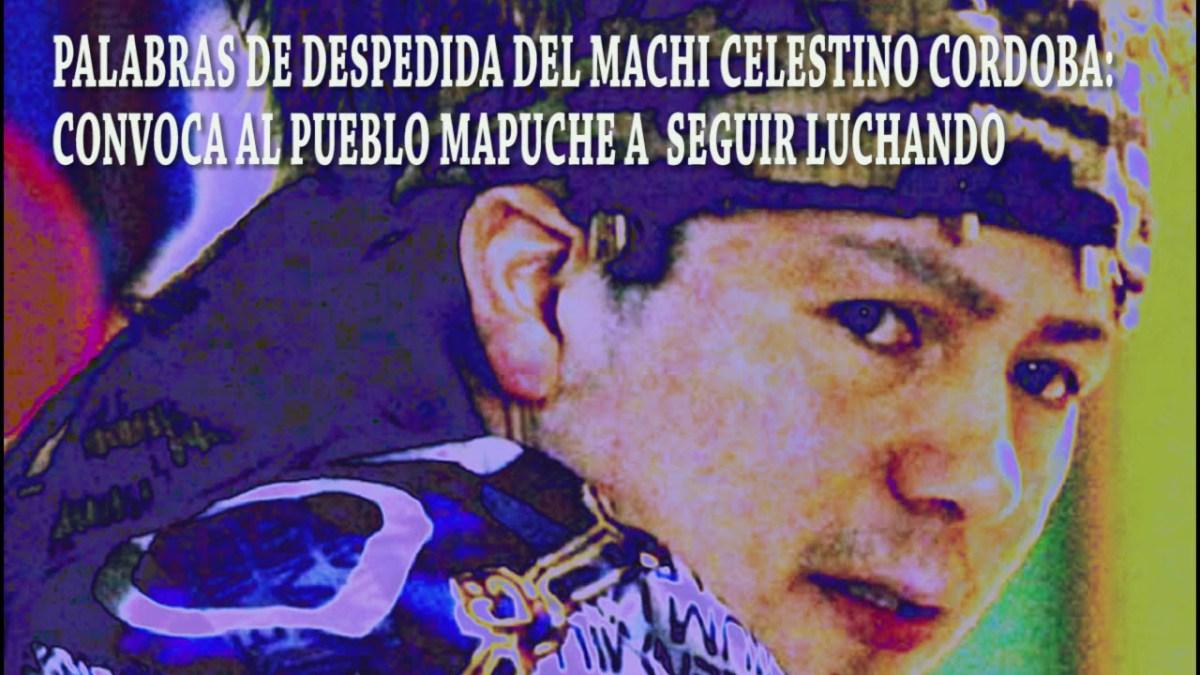 «A la Nación mapuche y los pueblos originarios, a toda la sociedad no originarios del mundo»