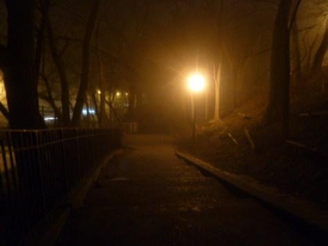 foggy_011514_14