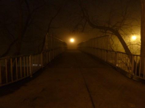 foggy_011514_15