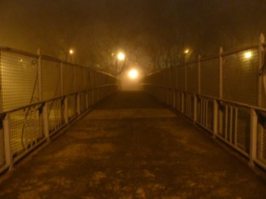 foggy_011514_17