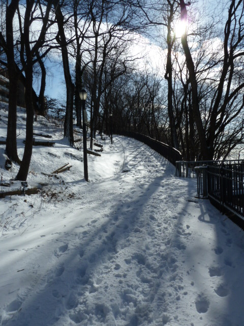 snowyday_010314_11