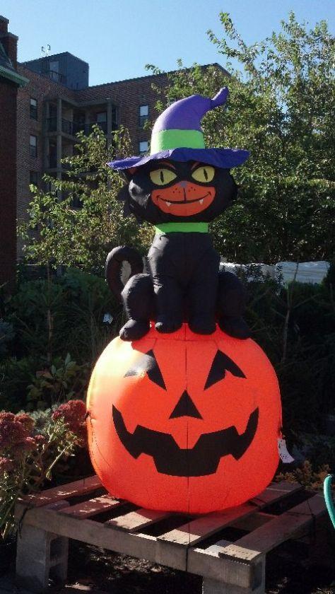 halloween_103114_16