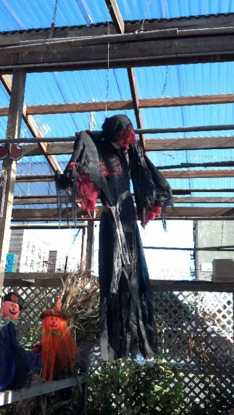halloween_103114_19