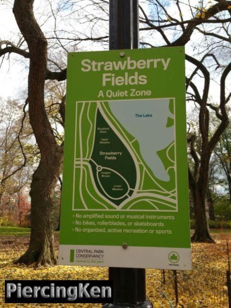 strawberryfields_120315_02