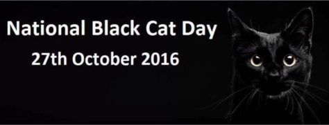banner-national-black-cat-day-2016