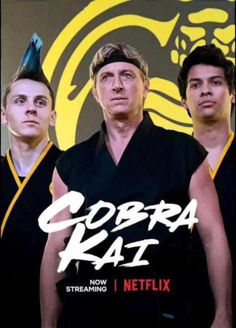 television posters, promotional posters, netflix original, cobra kai, cobra kai posters