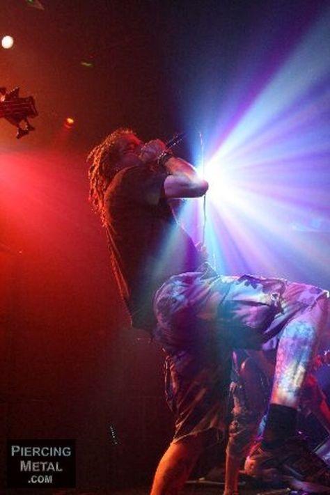 lamb of god, lamb of god concert photos