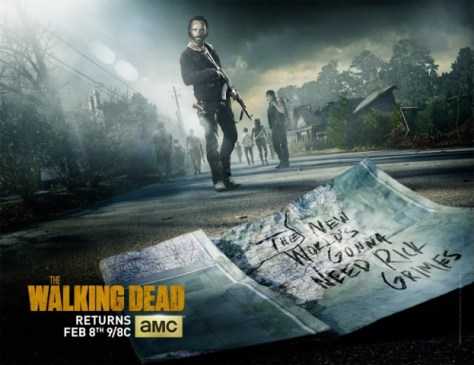 Poster - The Walking Dead - S5.5
