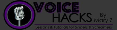 voicehacks logo