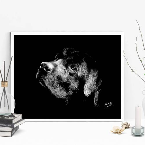 tableau moderne de labrador au pastel sec – dog painting number 1