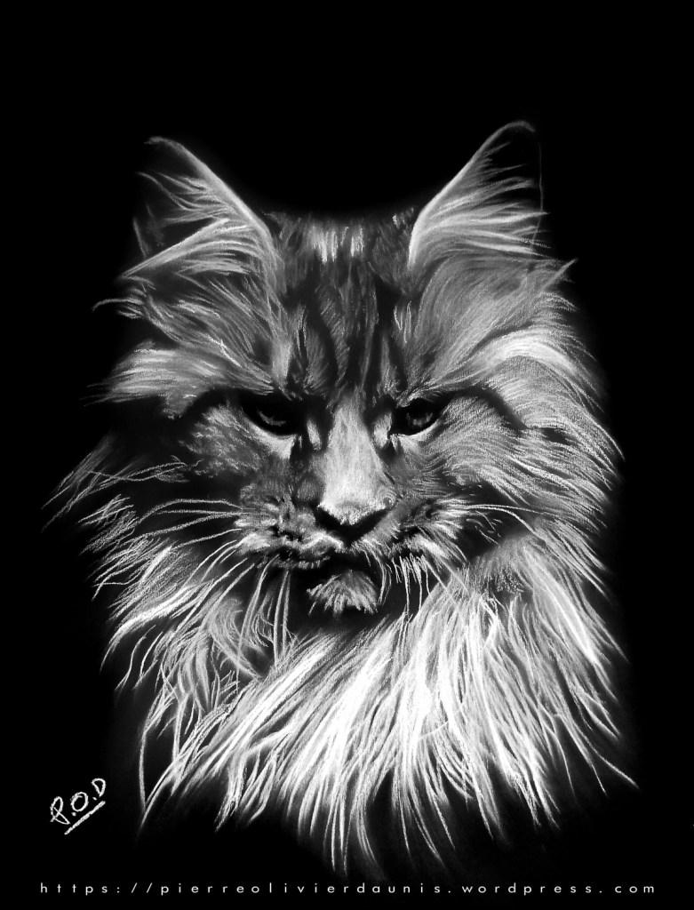 Votre projet peinture de chat