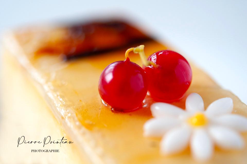 Photographie d'une part de flan aux groseilles, par Pierre Pointeau, photographe culinaire.