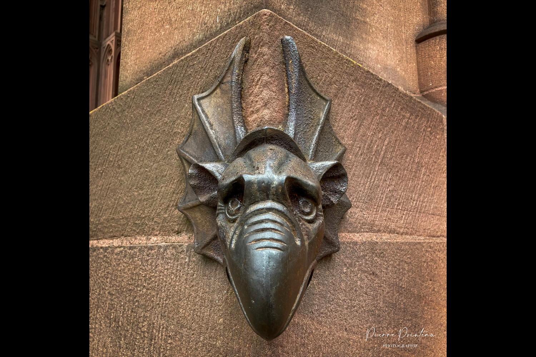 Photographie d'une tête de Dragon, détail de la Cathédrale de Strasbourg.