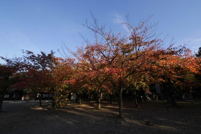 大阪 住之江公園