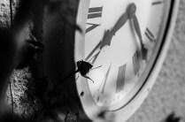 Clock- Ref. E02