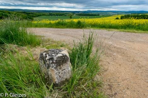"""Borne frontaliere, ancienne frontiere de l'empire allemand -----------------  Après la défaite, l'accord de paix signé à Versailles le 26 février 1871 imposa l'annexion de l'Alsace-Moselle et une nouvelle frontière entre la France et l'Allemagne. Celle-ci courait du Luxembourg à la Suisse en bouleversant les pourtours des départements de la Moselle, de la Meurthe, des Vosges et du Haut-Rhin. En Lorraine, cette ancienne frontière perdure aujourd'hui, car le département actuel de la Meurthe-et-Moselle a conservé son exact tracé. L'entretien des routes départementales incombant aux Conseils Généraux, les goudrons de revêtement routier changent souvent de couleur quand l'on passe d'un département à l'autre. Deux guerres mondiales n'auront donc pas fait disparaitre ces lignes sur la chaussée. Plus de quatre mille bornes marquées d'un numéro et des lettres D et F ont été positionnées pour jalonner la nouvelle frontière de 1871. Aujourd'hui, certaines sont toujours visibles au bord des fossés. Les lettres D (Deutschland) ont presque toutes été martelées afin de les rendre illisibles. Entre 1871 et 1945, les Alsaciens-Mosellans ont changé cinq fois de nationalités. Cela explique que sur leurs monuments aux morts, à de rares exceptions, l'on n'y lit pas l'épitaphe """"Morts pour la France"""" mais plutôt """"A nos morts"""". Comment, en effet, commémorer le souvenir de ces hommes combattant pour l'armée allemande ?"""