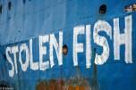 Action de Greenpeace sur le Binar 4, navire congélateur panaméen travaillant pour les flottilles de pêches chinoises qui oeuvrent au large des cotes africaines de Guinée, pêche pirate, poissons volés.