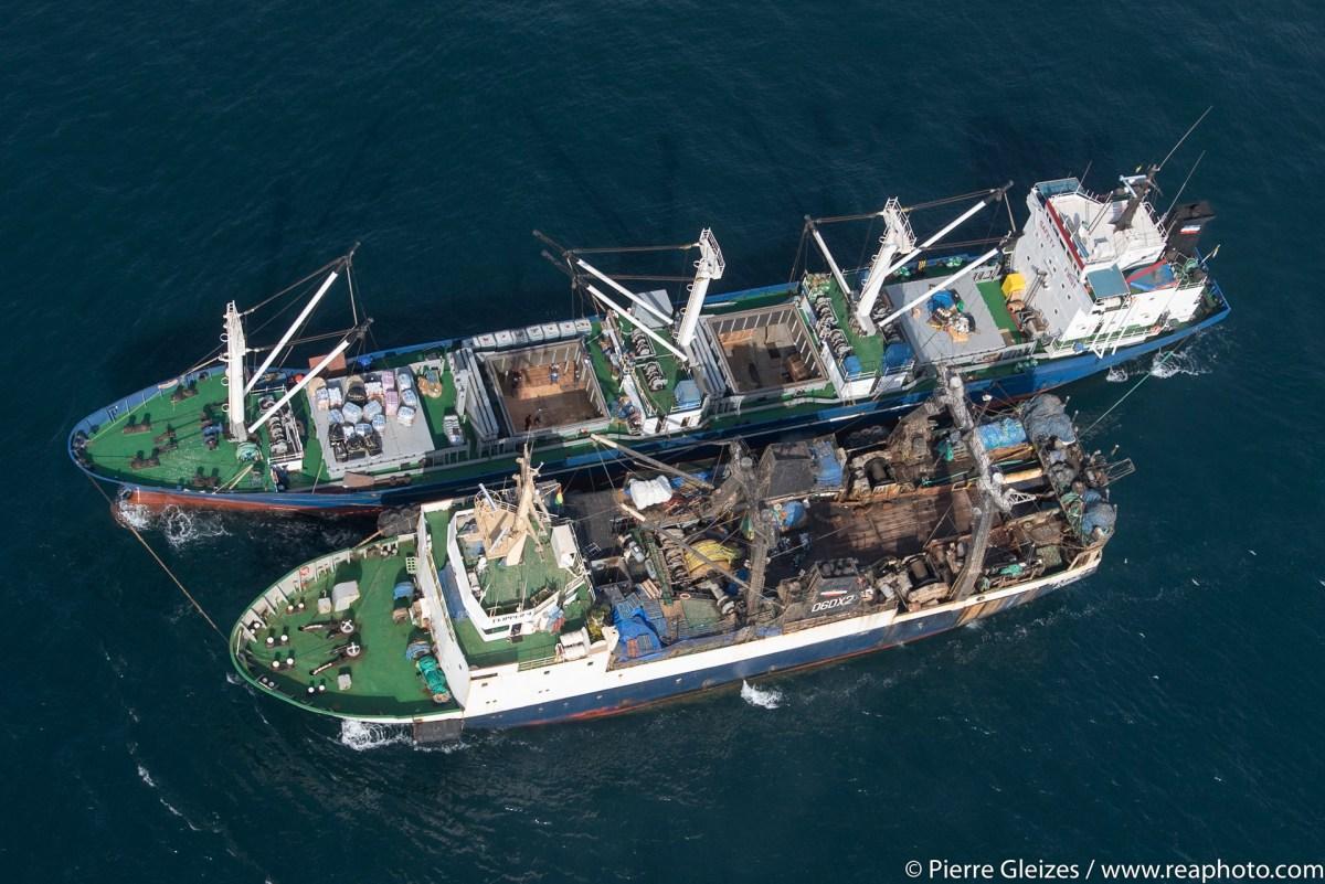 Ce n'est plus de la pêche, c'est de l'extermination… Flottille russe surprise en flagrant délit de transbordement illégal de milliers de cartons de poissons congelés à 50km au large de la Guinée-Bissau le 22 mars 2017
