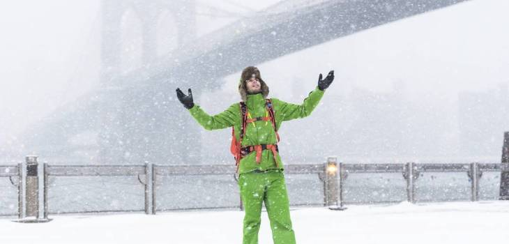 pierre t. lambert brooklyn bridge snow