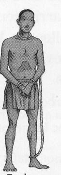 un esclave des Antilles