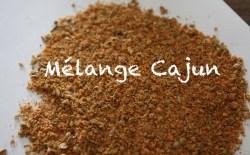 Recette mélange épice cajun