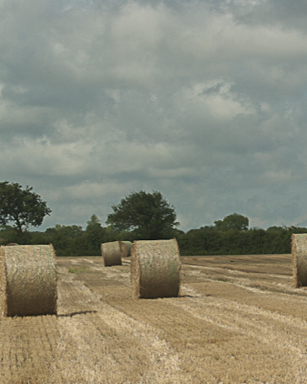 Bales of hay in the North Norfolk countryside