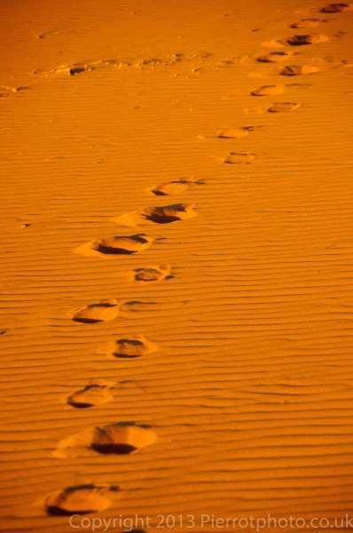 Camel tracks in the sand in the Sahara desert, Morocco