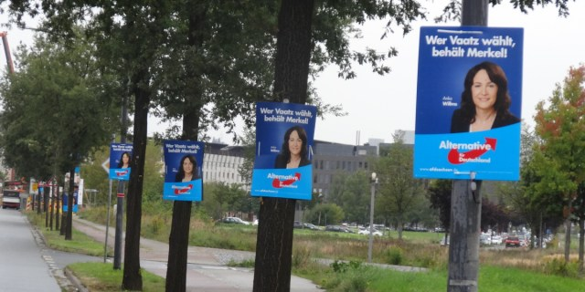 afd wahlplakate willms