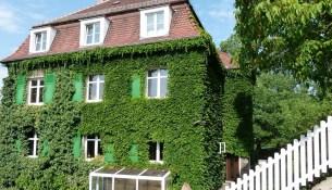 Dresden baut grün Simon