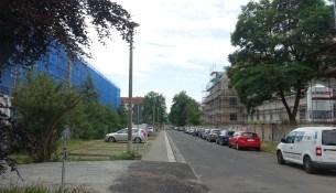 Klingerstraße Bäume