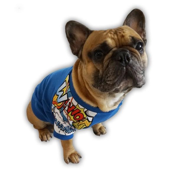 Bluza dla buldoga francuskiego Komiksowo niebieska