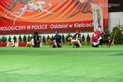 PIESRASOWY-KIELCE2019-1430